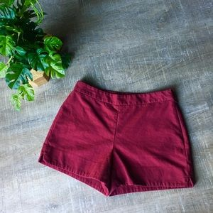 Ann Taylor Factory Textured Shorts